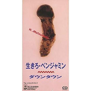 生きろ・ベンジャミン (ver.H.Matsumoto)