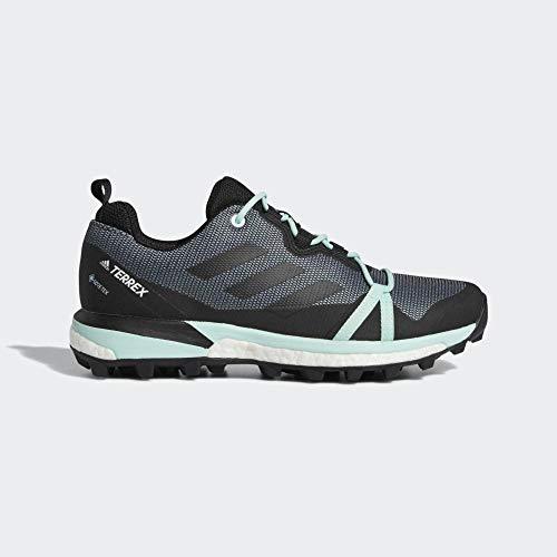 Adidas Terrex Skychaser Lt GTX W, Zapatillas de Deporte para Mujer, Multicolor...