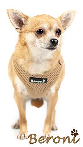 Beroni Chihuahua Geschirr Hundegeschirr Brustgeschirr Softgeschirr weich gepolstert verstellbar für kleine Hunde beige Mesh