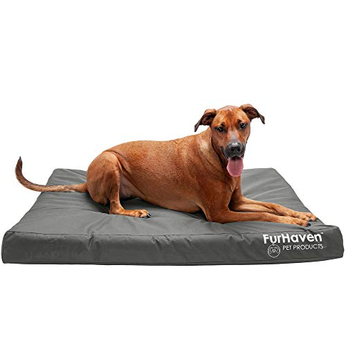 Furhaven Pet Dog Bed - Deluxe Orthopedic Mat Water-Resistant Indoor-Outdoor Logo Print Traditional Foam Mattress Pet Bed with Removable Cover for Dogs and Cats, Stone Gray, Jumbo