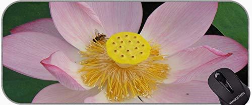 Mariposa Hermosa Flor de Loto Grande XXL Antideslizante Base de Goma Antideslizante Mousepad con Estera de Escritorio de Edgeslotus Cosido con Borde Cosido