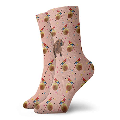 Warm-Breeze Fruit Parrot Bird and Cute Dog Compression Socks Chaussettes Unisex Crew Socks Thin Socks Short Ankle For Athletic Moisture Wicking