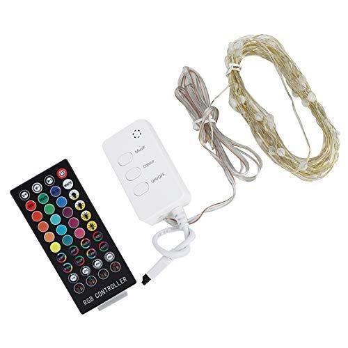 Asixxsix Cadena de luz, 10 m con Interfaz USB Cadena de luz Musical, 100 LED para iluminación, Boda, Fiesta de Navidad, decoración del hogar