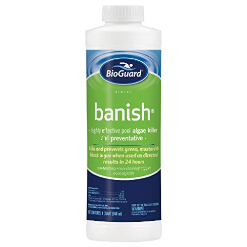 BioGuard Banish Algicide - 1 Quart