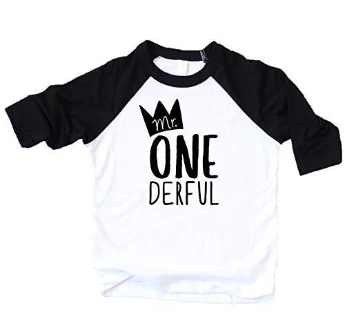 Mr One-Derful Baseball Tee Shirt for Boys 1st Birthday Shirt - http://coolthings.us