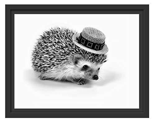 Picati Lustiger Igel mit Hut im Schattenfugen Bilderrahmen   Format: 38x30   Kunstdruck auf hochwertigem Galeriekarton   hochwertige Leinwandbild Alternative