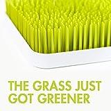 Boon GRASS Abtropfgestell mit praktischer Auffangschale für die Küche, Stylisches zweiteiliges Trockengestell in Grün, Baby Erstausstattung, Trockenständer für Babyflaschen, Baby Zubehör - 6