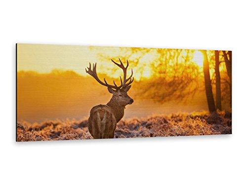 Alu-Dibond Bild Hirsch Jäger 125 x 50cm Butlerfinish® Edel gebürstetes Wandbild, Metall effekt Eyecatcher! ALP12502200
