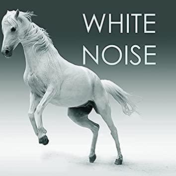 White Noise Therapy - Sounds of Nature for Baby & Adult Sleep
