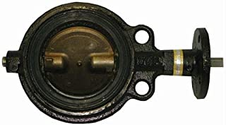 Butterfly Valve - 6100 Series, Cast Iron Material, 3 in Port Size, 200 psi Operating Pressure