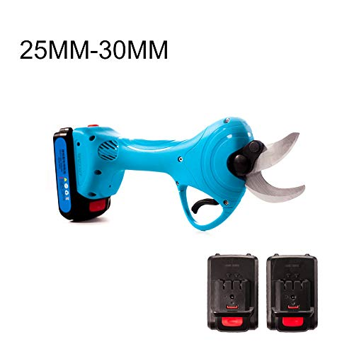 Great Price! CBPE Professional Cordless Electric Pruning Shears, 2 Backup Rechargeable 2Ah Lithium B...