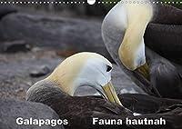 Galapagos. Fauna hautnah (Wandkalender 2022 DIN A3 quer): Die einzigartige Tierwelt auf Galapagos wird aus naechster Naehe gezeigt. (Monatskalender, 14 Seiten )