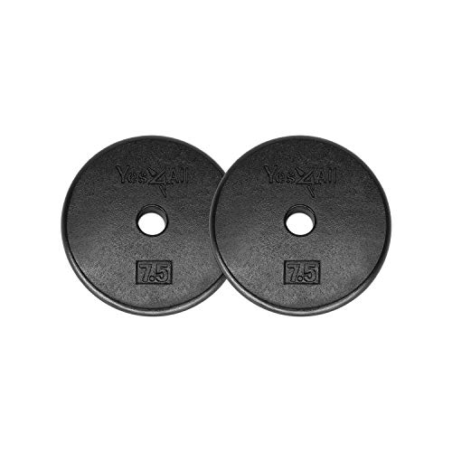 Yes4All 1-inch Dumbbell Plate, Black, 7.5 Pound (Pack of 2)