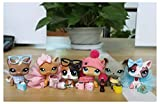 WOLFGIRL LPS Shorthair Cat Lot 391 1170 2291 339 525 Grey Brown Pink Yellow Blue Eyes Kitten Collect Figure with Accessories Lot Kids Gift