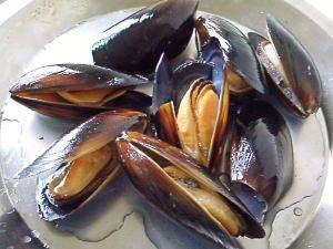 カナダ産冷凍ムール貝