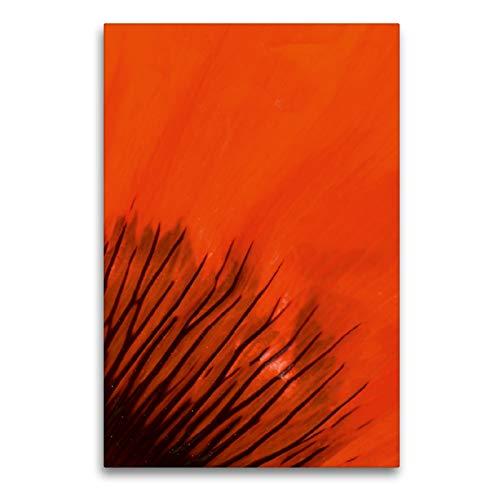 CALVENDO Premium Textil-Leinwand 60 x 90 cm Hoch-Format Blütenblatt im Detail, Leinwanddruck von Brigitte Deus-Neumann