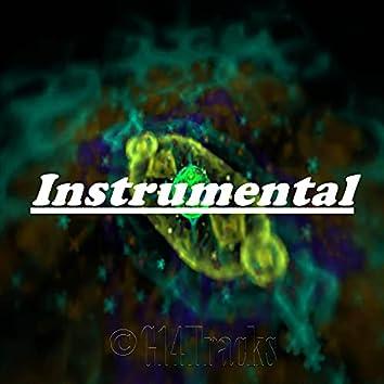 Walk In My Shoes (Instrumental) (Instrumental)