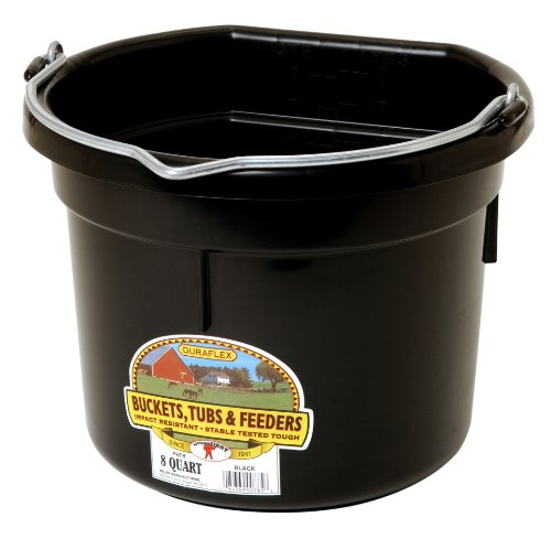 Little Giant Plastic Animal Feed Bucket (Black) Flat Back Plastic Feed Bucket with Metal Handle (8 Quarts / 2 Gallons) (Item No. P8FBBLACK)