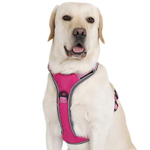 PETTOM Hund Geschirr Weich Hundegeschirr für Kleine Mittelgroße und Große Hunde(Rosa,S)