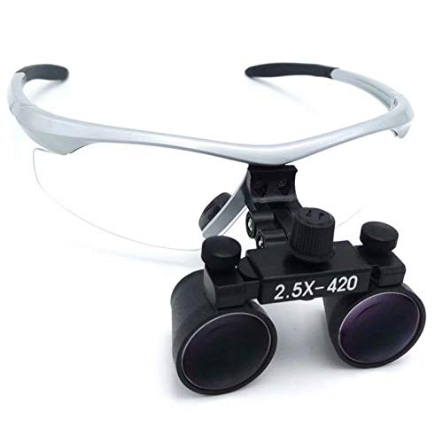 Global-Dental 2.5x420mm Loupes Surgical Binocular Loupe Magnifier DY-101 Silver