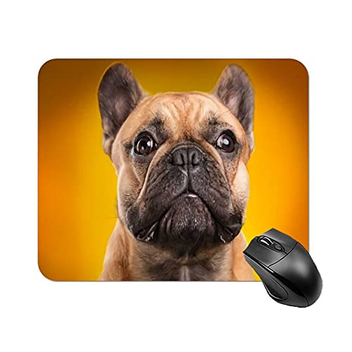 Mouse Pad French Bulldog Isolated Over Orange Background Retouched for Office Computers Laptop Travel Gaming Working Studying Graphic Designers Gaming pc Felt Desk mat lz 1822cm