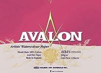 AVALON アヴァロン 水彩紙 ブロック AVB-F10