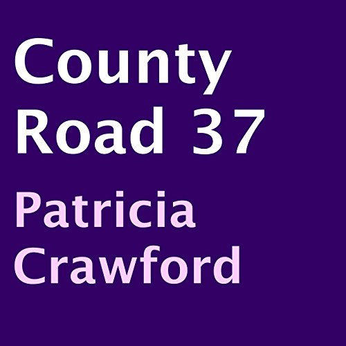 County Road 37 audiobook cover art