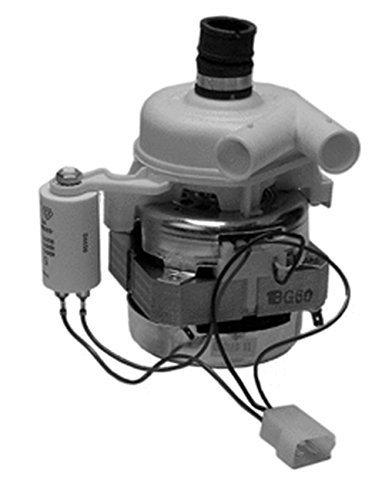 Casaricambi - Motore Pompa Lavastoviglie 60W 2800 Giri Con. 3 Faston Ariston Merloni 055004