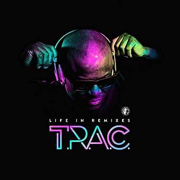 Life in Remixes