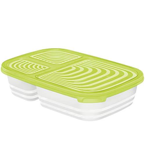 Rotho Sunshine Boîte de Conservation 1L avec 3 Compartiments et Couvercle, Plastique (PP) sans BPA, Vert, 1L (23,3 x 16,0 x 5,4 cm)