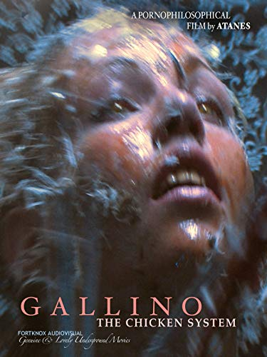 Gallino, the Chicken System