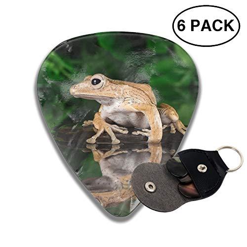 Celluloid Guitar Picks 3D Printed Animal Frogs Water Amphibian Best Guitar Bass Gift For Beginner