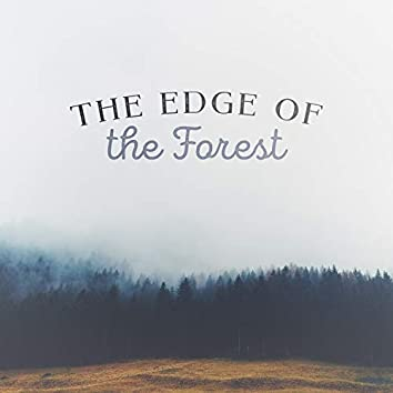 The Edge of the Forest