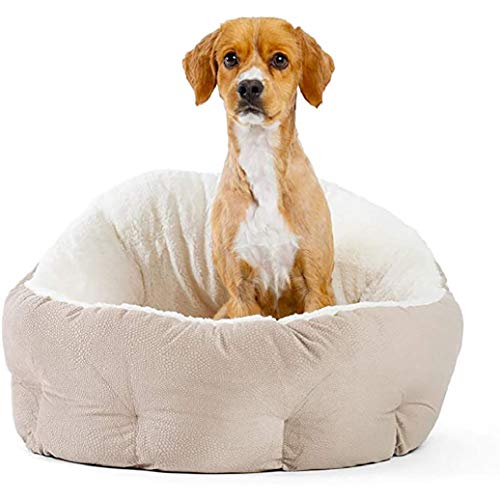 Queta Deluxe Pet Bed for Cats and Small Medium Dogs Cuddler, Machine Washable, Super Soft and Cosy Plush Dog Bed, 60 * 57 * 27 CM(Wheat-colored)