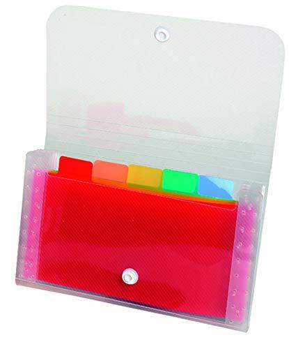 Exacompta 55498E - Clasificador pocket 6 compartimentos en polipropileno, 11 x 18 cm, blanco transparente