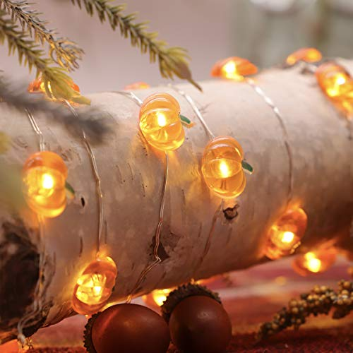 MIYA LIFE Pumpkin String Lights 10ft 40LEDs Copper Wire With the Remote & Timer for Thanksgiving Halloween Christmas Birthday Gift Autumn Indoor Outdoor Parties Home Bedroom Decoration