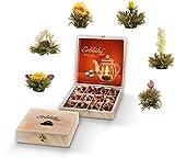 Set regalo di Creano di Fiori di Tè in...
