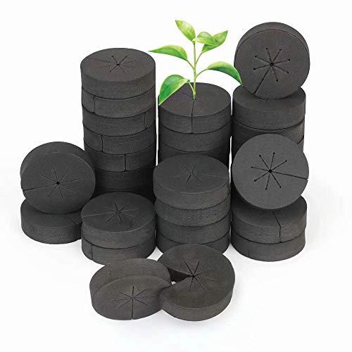 30/60 / 120pcs Garden Clone Kragenschwamm Pflanzenvermehrung, Samenstart Hydroponic Growing Medium Soilless Hydroponic Schwämme