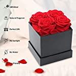 rose gifts for her birthday gifts forever preserved fresh cut roses, handmade eternal roses in a box that last a year, best gifts for women her valentines day mothers day anniversary (4 roses)