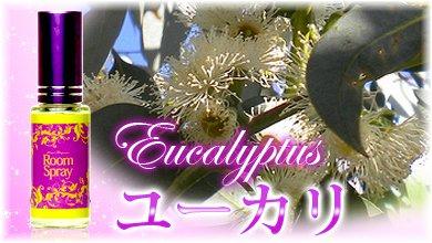 ルームスプレー・ユーカリ12ml【aroma oil/アロマ オイル/精油/リラクゼーション】