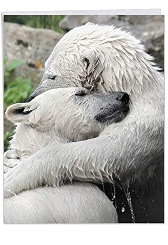 Bear Hugs - Animal Friendship Card with Envelope (Big 8.5 x 11 Inch) - Polar Bear Love, Thinking of You Greeting Card - Miss You Stationery J6327BFRG