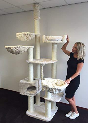 Kratzbaum Grosse Katzen stabil deckenhoch XXL Catdream Extreme Beige katzenkratzbaum für Maine Coon große katzenbaum deckenspanner schwere Katze kletterbaum