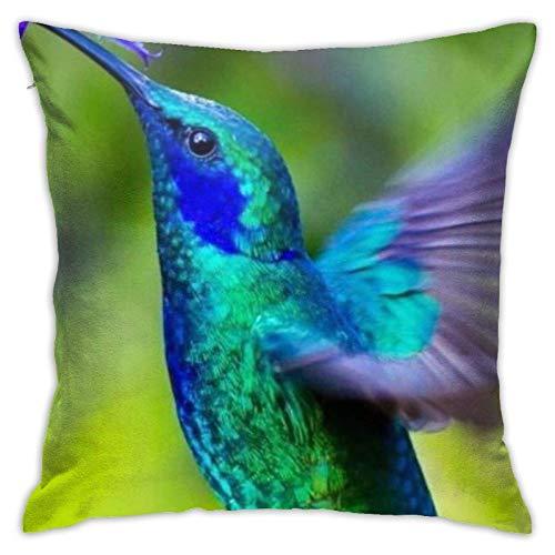 Violeta Colibrí dormitorio, sala de estar, habitación, sofá, bonita funda de almohada