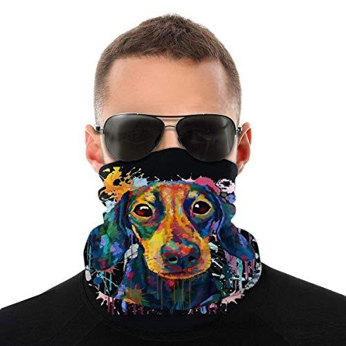 Nother Dachshund - Máscara antiviento para perro, diseño de arco iris, color negro, lavable, con doble impresión
