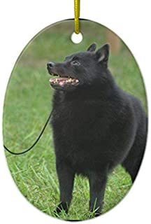 Delia32Agnes Schipperke Dog Ceramic Christmas Ornaments Ceramic Double Sided Christmas Tree Decorations Hanging 3 Inches