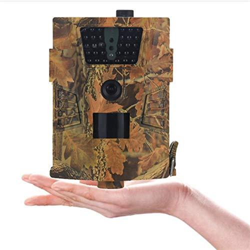 WJY Cámara de Caza de 12MP 1080P, Cámara de Vigilància de la Vida Silvestre, IP65 Impermeable y Rango de detección 120°, Cámara de Fototrampeo para el Monitoreo de la Vida Silvestre