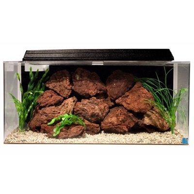 SeaClear 40 gal System II Acrylic Aquarium, 36 by 15 by 16', Black