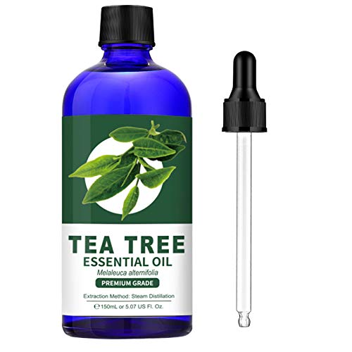 100% Pure Tea Tree Essential Oil (Large 5 oz) - Premium Grade Tea Tree Oil for Skin, Hair, Dry Scalp, Nail, Aromatherapy and Diffuser, Huge Bottle with Dropper, by Lagunamoon, 150ml, Package May Vary