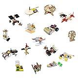 Ichiias Kit de Juguete Educativo Manual de Bricolaje, Kit de Juguete Educativo, Kit de Aprendizaje de física y Ciencia, Conjunto de Aprendizaje científico,(Elementary School Set Six [16-Piece Set])