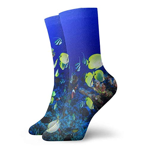 EU Colourful Fish Habitat Undersea Classics Kompressionsstrümpfe Cosy Athletic 11,8-Zoll-Crew-Socken für Männer, Frauen, Kinder